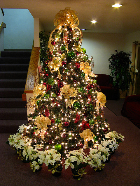 christmas tree decorated with gold bows and white lights