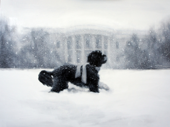 Image from White House Christmas Card 2012 - Bo in the Snow!